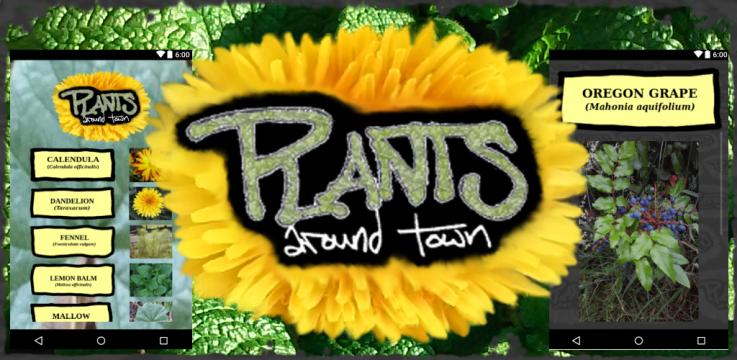 PlantsFeatureImage2